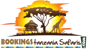 Bookings Tanzania Safaris