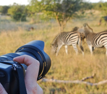 best safari camera for african safairi