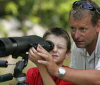 best birding scopes