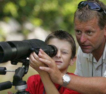 best birding scopes